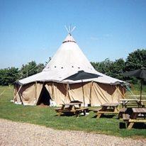 1 mands telt